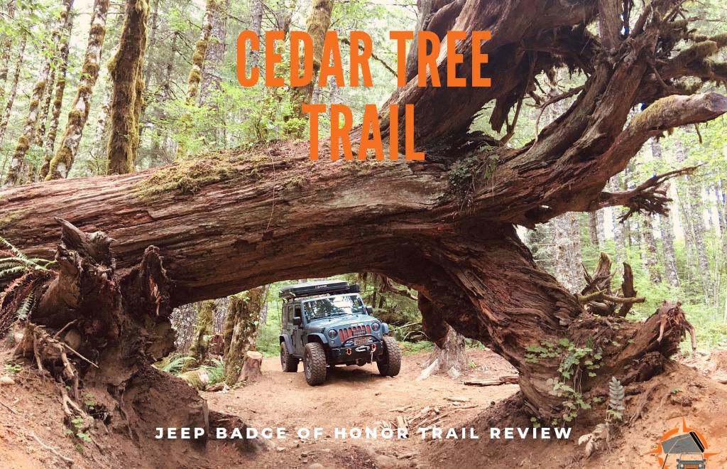Jeep Badge of Honor Trail Cedar Tree