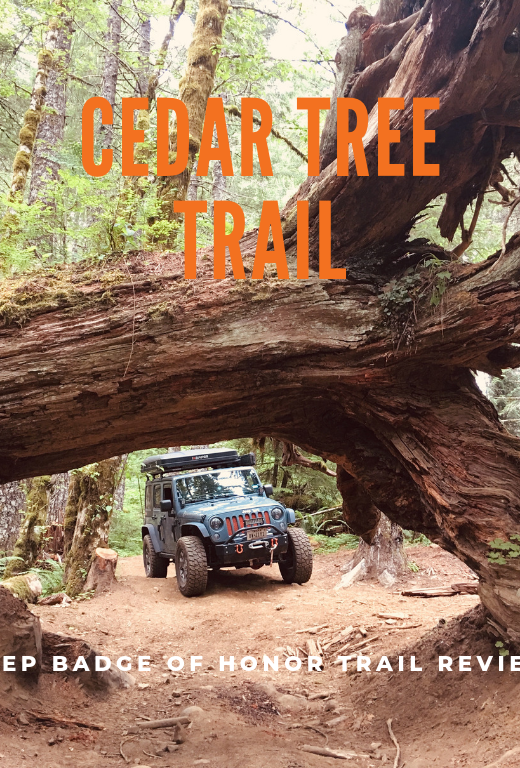 Jeep Badge of Honor Trail Cedar Tree