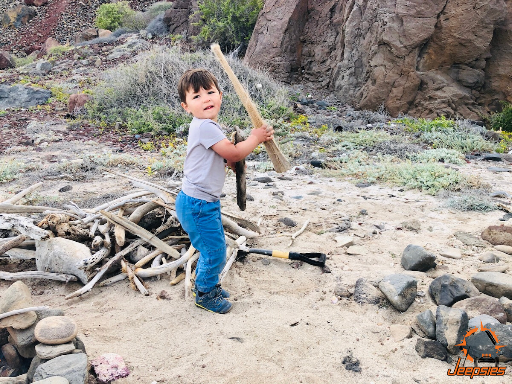 Toddler Collecting Driftwood on Beach in Baja