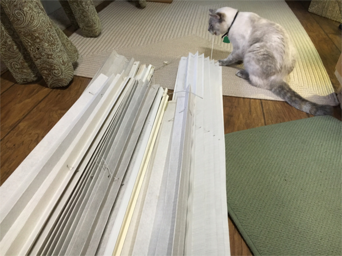 Old RV Blinds Going to Trash