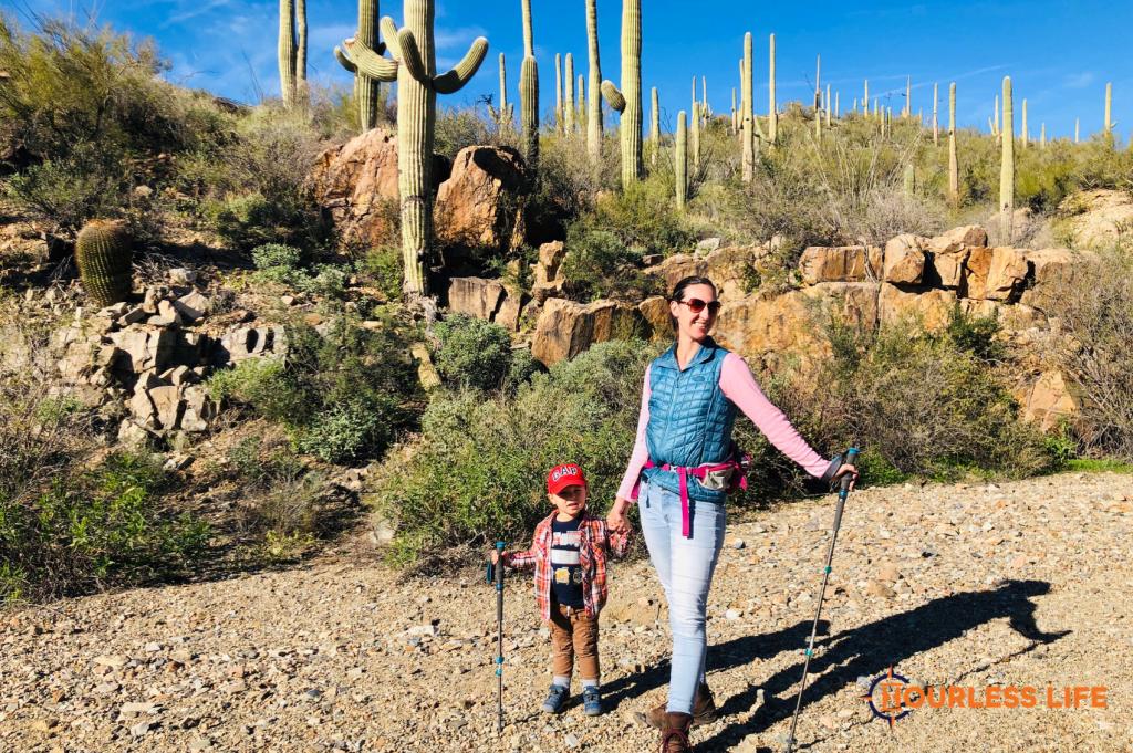 Hiking With Kids Saguaro National Park